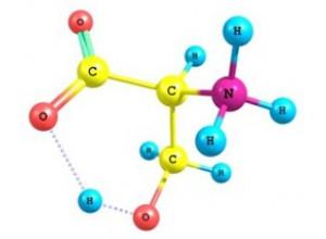 Аминокислоты, в чем польза для организма?